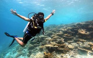 Scuba diving clubs phuket